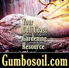 Gumbosoil.com is your resource for Gulf Coast Gardening