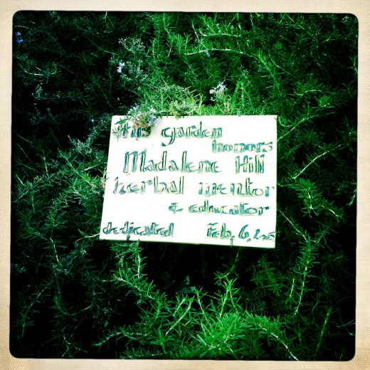 Madalene Hill Sign
